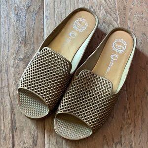 e816719c8aeb Jeffrey Campbell Shoes - Jeffrey Campbell Havana Gold Jelly Slides Sandals